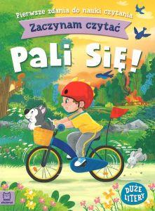 """Okładka książki Sarah Sheppard """"Niezwykłe mapy : dla miłośników przygód i snów na jawie"""""""