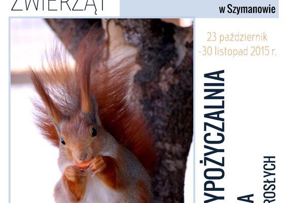 Plakat z wiewiórką