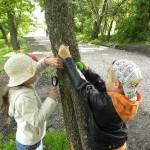 Dzieci oglądają drzewo przy użyciu lupy