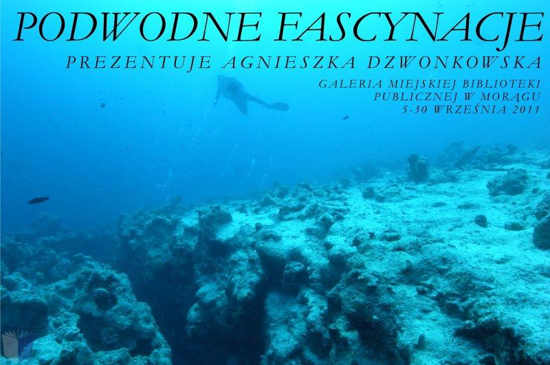 """Plakat """"Podwodne fascynacje"""", w tle nurek wśród rafy koralowej"""