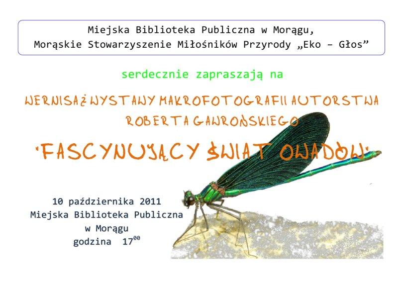 """Plakat """"Fascynujący świat owadów"""", w tle ważka"""