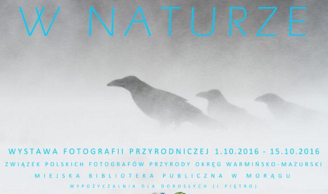 Wystawa fotografii przyrodniczej - plakat
