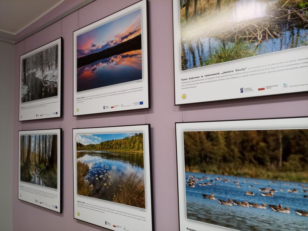 6 plansz na ścianie przedstawiające lasy, rzeki, jeziora, kaczki na wodzie, tamę bobrową