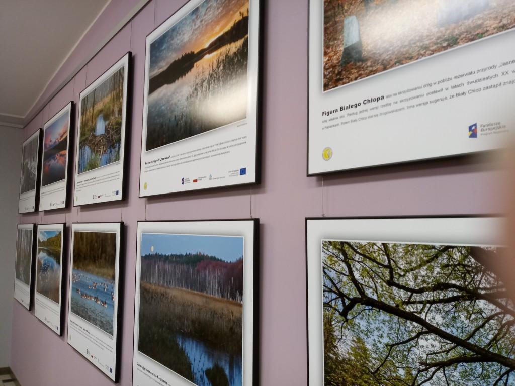 2 rzędzy plansz na ścianie ze zdjęciami przyrody